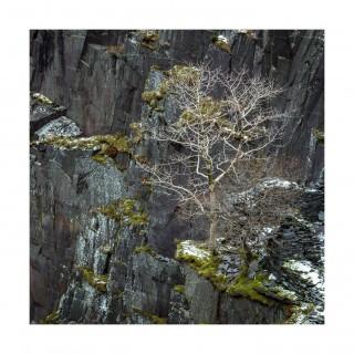 Snowdonia 11