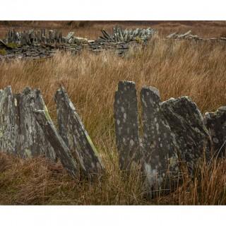 Snowdonia 26