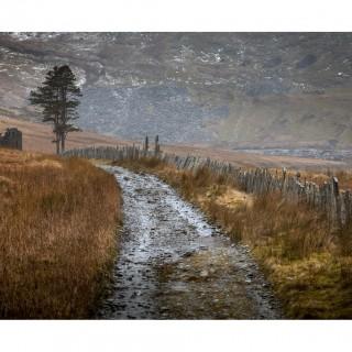Snowdonia 29