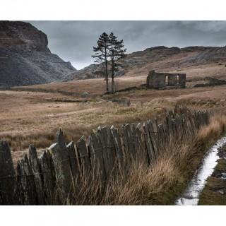 Snowdonia 36