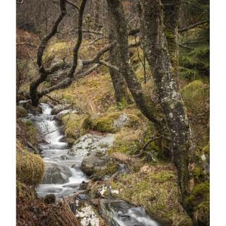 Snowdonia 48